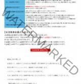 競馬ソフト指数(Keibaindexlogic)の画像