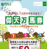ステップ競馬(STEP競馬)の画像